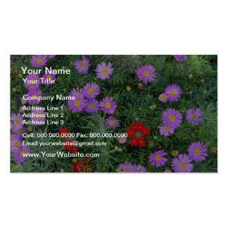 Pink Cosmos flowers Business Card Template