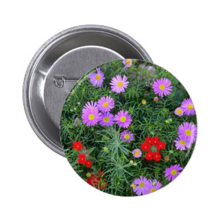 Pink Cosmos flowers Buttons