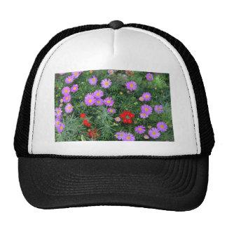 Pink Cosmos flowers Mesh Hat