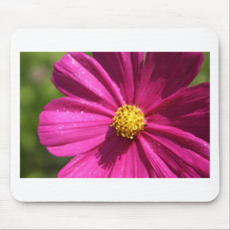 Pink Cosmos Mouse Pad
