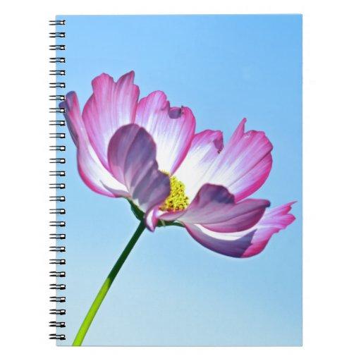 pink cosmos spiral note book
