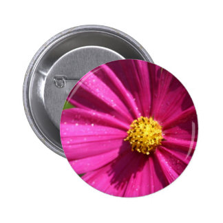 Pink Cosmos Pinback Buttons