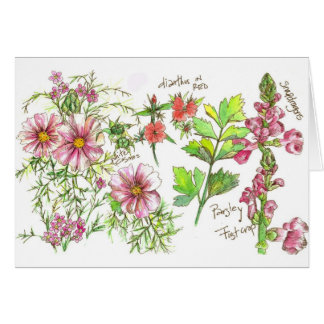 Pink Cosmos Snapdragon Journal Blank Note Card