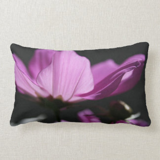 Pink Cosmos Sunny day pillow Cushion