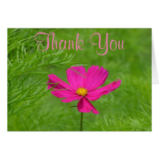 Pink Cosmos Thank You Card