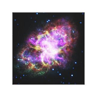 Pink Crab Nebula Space Image Canvas Print