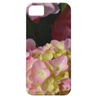 pink  cream hydrangeas iPhone 5 cover