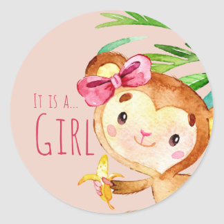 Pink Cute Monkey Baby Girl Announcement Classic Round Sticker