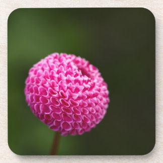 Pink Dahlia Flower Cork Coaster