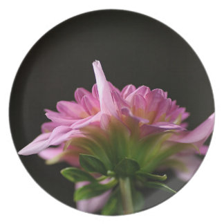 Pink Dahlia Flower Melamine Plate