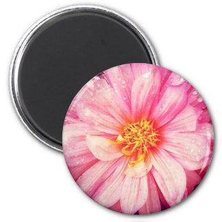 Pink Dahlia Flower Round Magnet