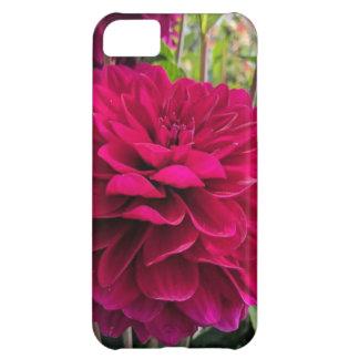 Pink Dahlia iPhone Case