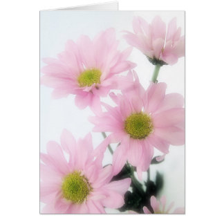 Pink Daisies Greeting Cards