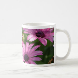 Pink Daisies Mug