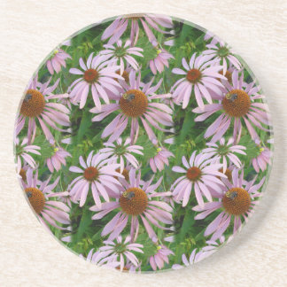Pink Daisies with a Bee Sandstone Coaster