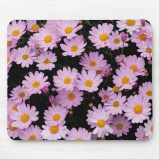 Pink Daisies with Yellow Centers Mouse Pad