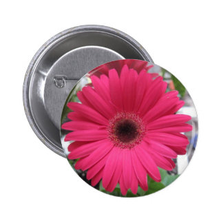 Pink Daisy Button