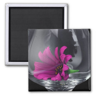 Pink Daisy Closeup In Wine Glass Refrigerator Magnet
