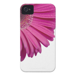 Pink daisy flower with water droplets beautiful iPhone 4 cases