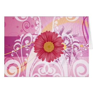 Pink Daisy Flowers Pictures Design Greeting Card