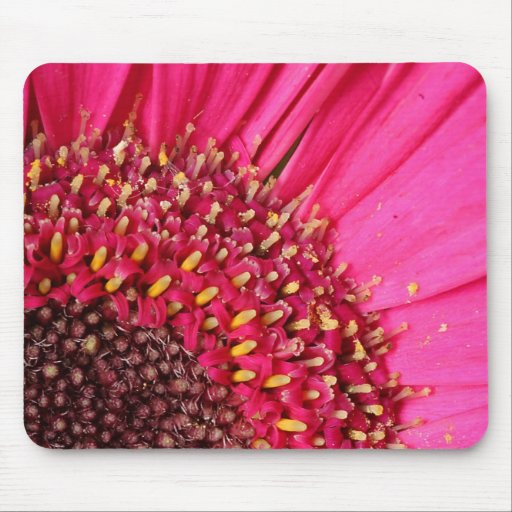 Pink Daisy - The Floral Collection Mousepads