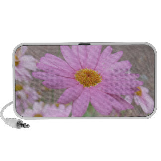 Pink Daisy Travelling Speakers