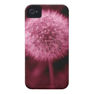 Pink Dandelion Blackberry Bold Case