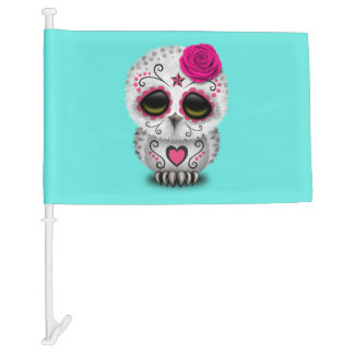 Pink Day of the Dead Baby Owl Car Flag