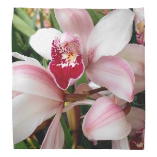 Pink Dendrobium Orchids Bandana