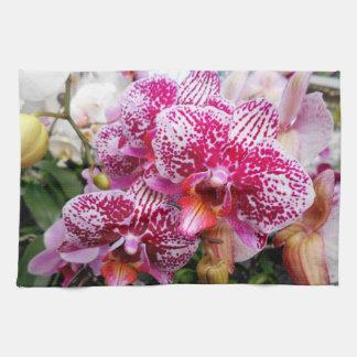 Pink Dendrobium Orchids Tea Towel