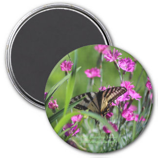 Pink Dianthus and Yellow Swallowtail Butterfly Magnet