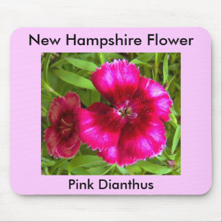 Pink Dianthus, Pink Dianthus, New Hampshire Flower Mouse Pad