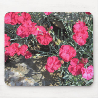 Pink Dianthus Rock Garden Mouse Pad