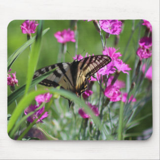 Pink Dianthus Yellow Swallowtail Butterfly Mouse Pad