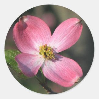 Pink Dogwood Bloom Round Sticker