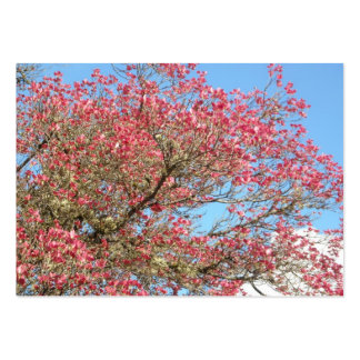 Pink Dogwood Blooms and Sky 3 Pack Of Chubby Business Cards