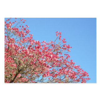 Pink Dogwood Blooms and Sky Pack Of Chubby Business Cards