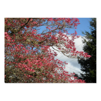 Pink Dogwood Blooms and Sky With Tall Pine Pack Of Chubby Business Cards