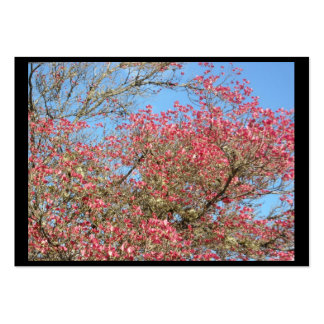 Pink Dogwood Blooms frame Business Card Template