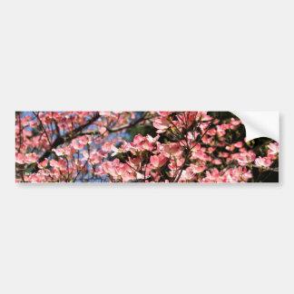 Pink Dogwood Blossoms Flower Photo Bumper Sticker Car Bumper Sticker
