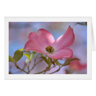 Pink Dogwood Flower Greeting Card