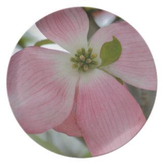 Pink Dogwood Flower Dinner Plates
