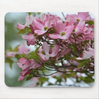 Pink Dogwood Flowers Mousepads