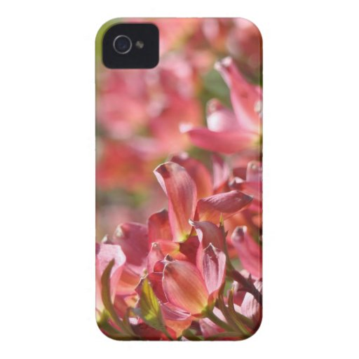 Pink Dogwood Spring Flowers Blackberry cases