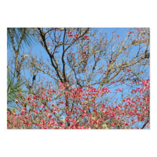 Pink Dogwood Tangle with Pine Pack Of Chubby Business Cards