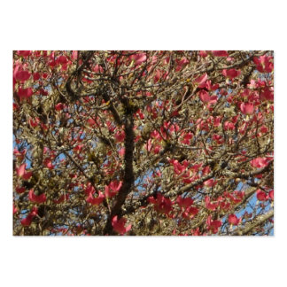 Pink Dogwood Tree and Branch in Bloom Pack Of Chubby Business Cards