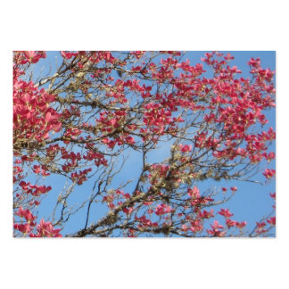 Pink Dogwood Tree in Bloom 5 Pack Of Chubby Business Cards