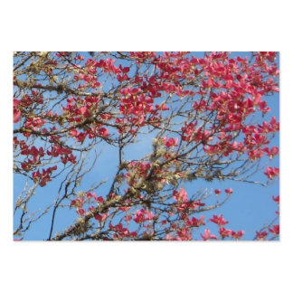 Pink Dogwood Tree in Bloom Pack Of Chubby Business Cards