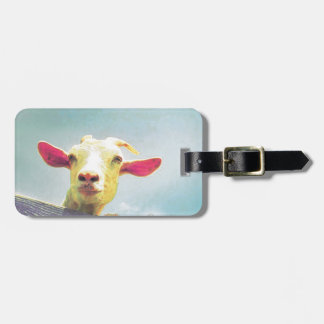Pink-eared goat luggage tag