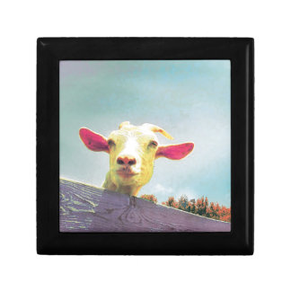 Pink-eared goat small square gift box